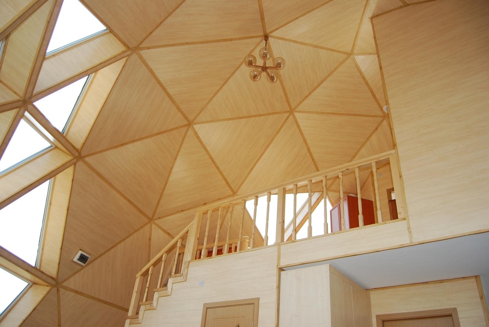 Dome (49)